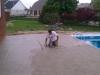 pool-installation-008